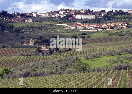 Wine fields, Panzano, Tuscany, Italy - Stock Photo