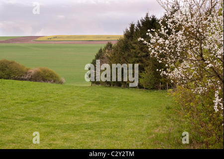 A British spring counrtyside scene of rolling hills - Stock Photo