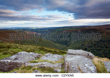 View over the Dart Valley Nature Reserve, Dartmoor National Park, Devon, England, UK - Stock Photo