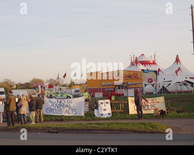 Demonstrators against the use of animals in circus acts at the entrance to Bobby Roberts travelling circus. - Stock Photo
