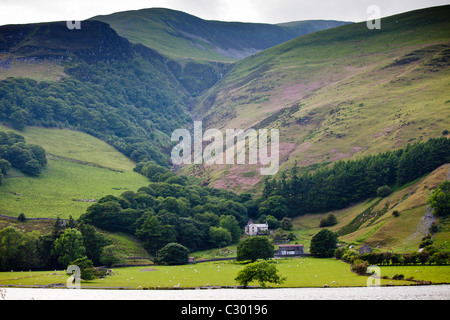 Hill farm on mountain slopes at Tal-Y-LLyn, Snowdonia, Gwynned, Wales - Stock Photo