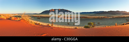 Panoramic view showing the unique ecology of the south-west Namib desert or pro-Namib. NamibRand Nature Reserve, - Stock Photo