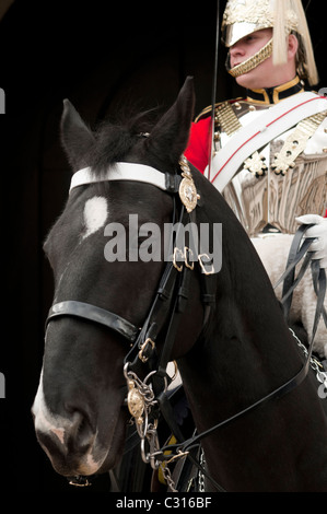 Queen's Life Guard at the entrance of Horse Guards,London,England - Stock Photo