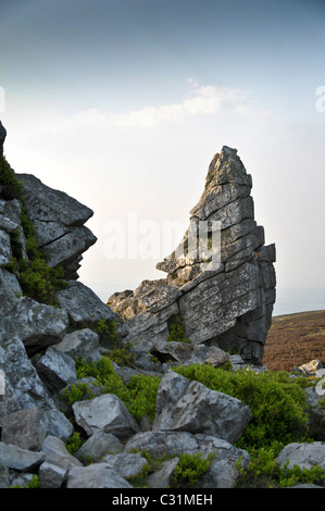 Stiperstones natural rock formation with Shropshire moorland and hills in early evening sunlight - Stock Photo