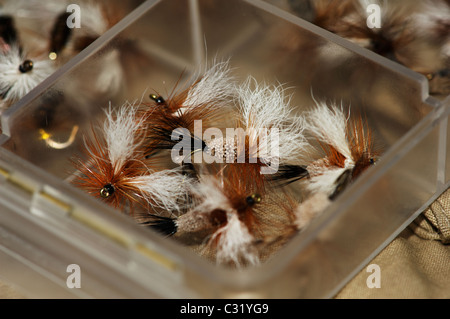 Various fly fishing flies for trout and steelehad - Stock Photo