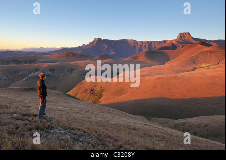 Male hiker overlooking Amphitheatre Mountain at dawn from Witsieshoek, Royal Natal National Park, South Africa - Stock Photo