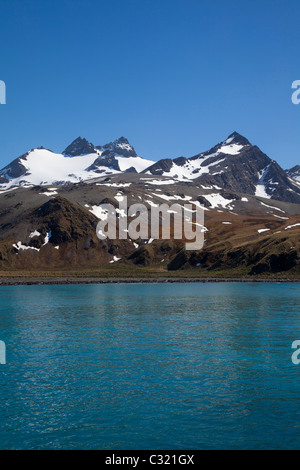 The stunning Gold Harbour on a sunny spring day, South Georgia Island - Stock Photo
