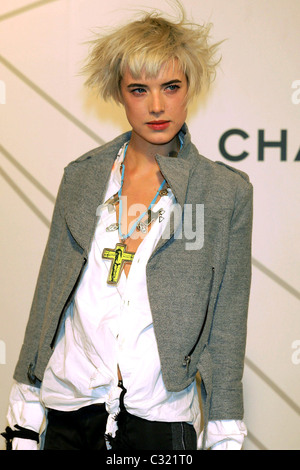 Agyness Deyn Opening Party for Mobile Art: Chanel Contemporary Art Container in Central Park New York City, USA - Stock Photo