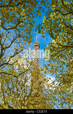 View of the Eiffel Tower looking through the autumn leaves on the trees in the Parc du Champ de Mars - Stock Photo
