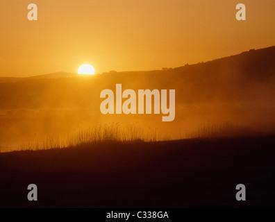Near Bunratty Castle, Co Clare, Ireland - Stock Photo