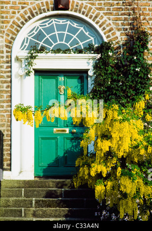 Dublin, Co Dublin, Ireland, Georgian Doors - Stock Photo