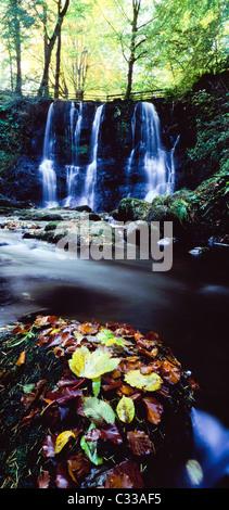 Glenoe, Co Antrim, Northern Ireland, Waterfalls - Stock Photo