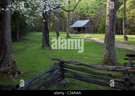 Great Smoky Mountains National Park, Tennessee - Carter Shields cabin in Cades Cove. - Stock Photo