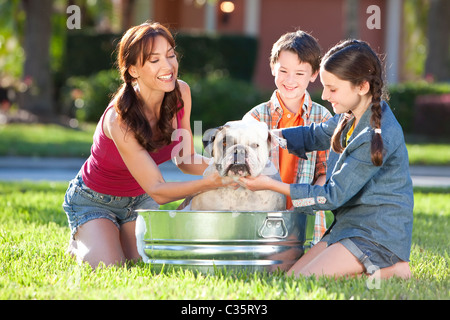 A beautiful mother, son and daughter family washing their pet dog, a bulldog outside in a metal bath tub. - Stock Photo