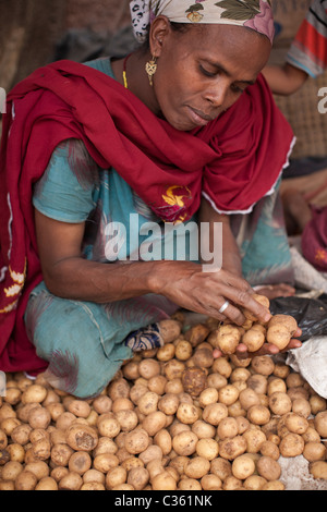 A woman sorts potatoes in Old Town, Harar, Ethiopia, Africa. - Stock Photo