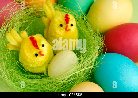 Colorful Easter eggs and two decorative chicks in a nest festive still life - Stock Photo