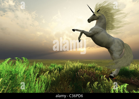 The fabled Unicorn Stag rears up in the afternoon sunset. - Stock Photo