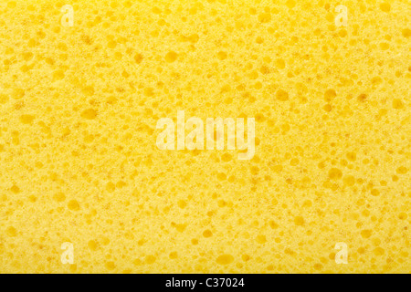 Close up of yellow sponge texture - Stock Photo