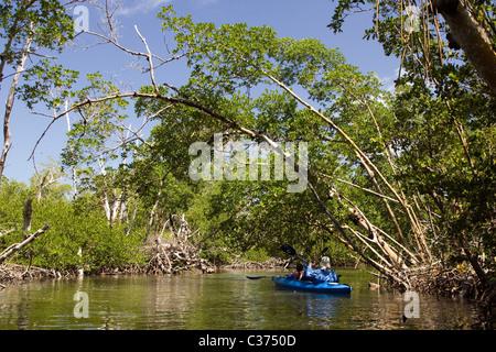 Kayakers at J. N. Ding Darling National Wildlife Refuge - Sanibel Island, Florida - Stock Photo