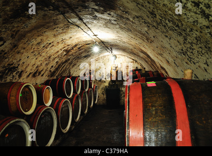 Wine cellar, Zakarpattia province, western Ukraine - Stock Photo
