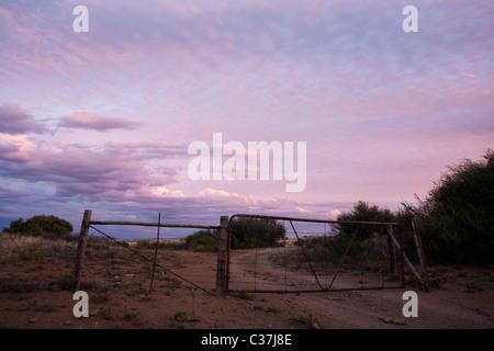A gate under a pink evening sky near Colesberg. - Stock Photo