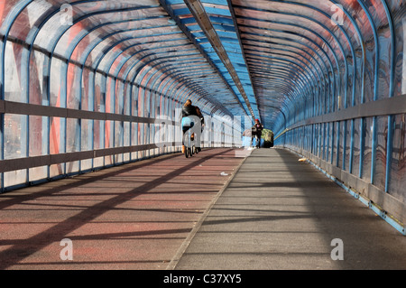 Tony Carter cycle bridge in Cambridge, UK. Listed in the Guinness Book of Records when built as the longest covered - Stock Photo