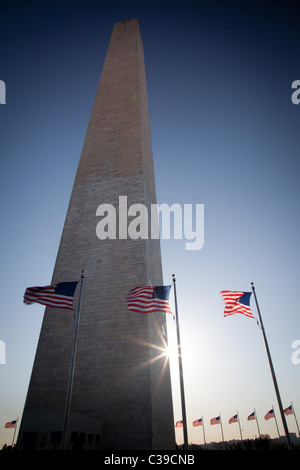 The Washington Monument at the National Mall in Washington, DC surrounded by American flags - Stock Photo