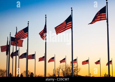 The flags surrounding the Washington Monument in Washington, DC at sunset - Stock Photo