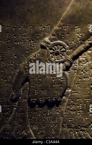 Mesopotamian art. Neo-Assyrian. Relief panels depicting two protective winged genius. Detail. Hand. Dated between - Stock Photo