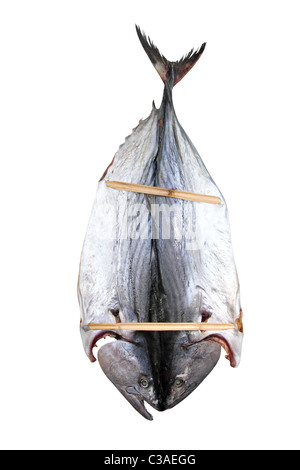 bonito tuna salted dried fish Mediteraranean sarda style - Stock Photo