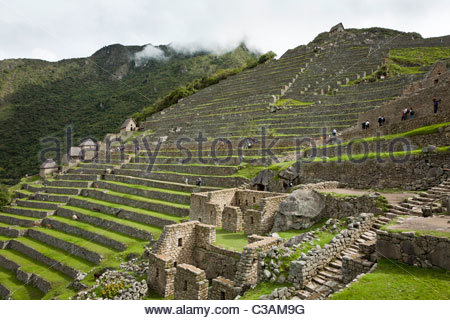 View of agricultural terraces in the western agricultural sector of the Machu Picchu complex. - Stock Photo