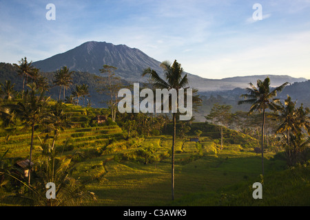 GUNUNG AGUNG the tallest mountain on the island with RICE TERRACES and COCONUT PALMS along SIDEMAN ROAD - BALI, - Stock Photo