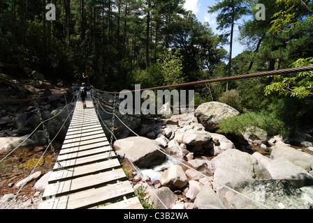 Boy walking on a suspension bridge above rocks, Corsica, France - Stock Photo