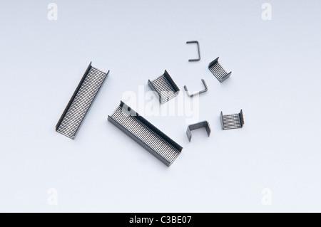 staplers - Stock Photo