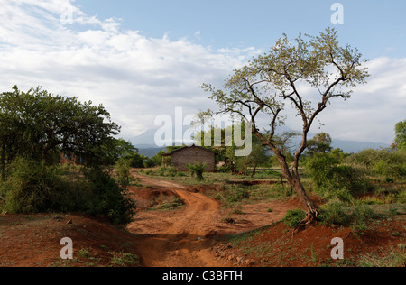 View of Mount Kilimanjaro with clouds in the distance, in the Kilimanjaro National Park, Tanzania, East Africa - Stock Photo