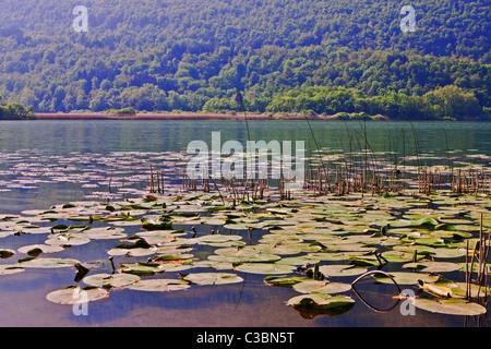 idyllischer Gebirgssee Lago di Piano - Stock Photo