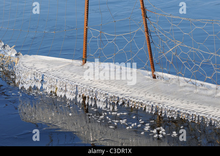 water in solid form, ice formations, old wire fence, winter, cold, nature, ice - Stock Photo