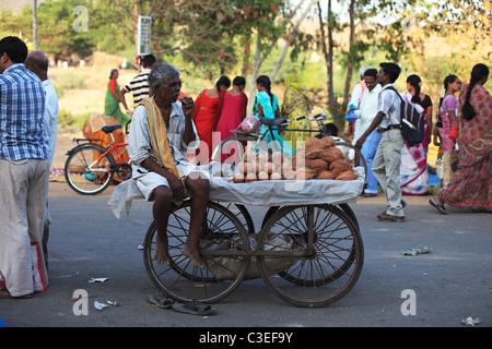 Man selling coconuts at the market in Andhra Pradesh South India - Stock Photo