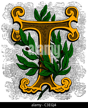 Victorian wood-engraved floral decorative initial letter T for a drop cap (drop capital), Leaves and colours. Original - Stock Photo