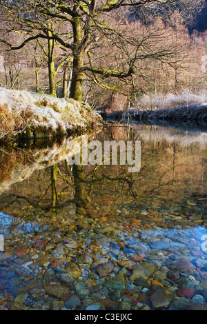 Frost-covered trees reflected in the still waters of the River Derwent in winter near Rosthwaite in the Lake District - Stock Photo