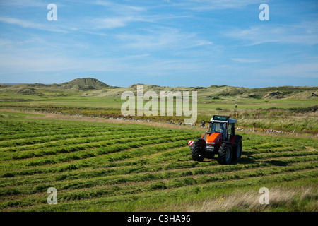 Tractor in a field cutting silage, Enniscrone, County Sligo, Ireland. - Stock Photo