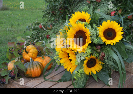 Autumn harvest fruit still with sunflowers and pumpkins - Stock Photo