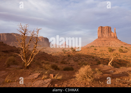 West Mitten Butte in Monument Valley Navajo Tribal Park, spanning the border between Arizona and Utah in southwestern - Stock Photo