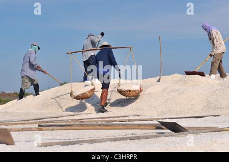 Salt farm in Samut Sakhon province on the coast of the Gulf of Thailand - Stock Photo