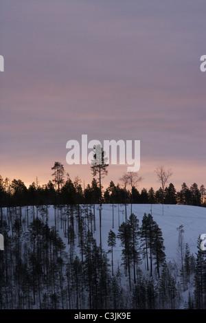 Winter, Norrland, Sweden. - Stock Photo