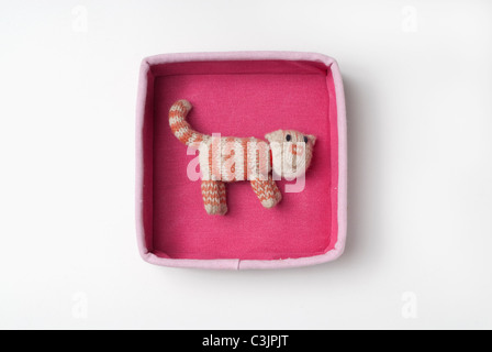 Cat in a pink box - Stock Photo