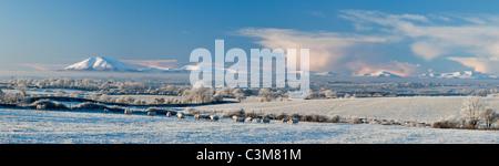 Winter sheep and snowy fields beneath the Nephin Beg Mountains, County Sligo, Ireland. - Stock Photo
