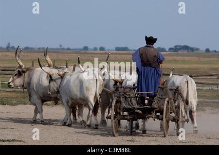Hungary Kalocsa Great Plains Puszta Traditional