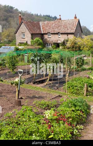 A kitchen garden in the Exmoor village of Horner, Somerset, England UK - Stock Photo