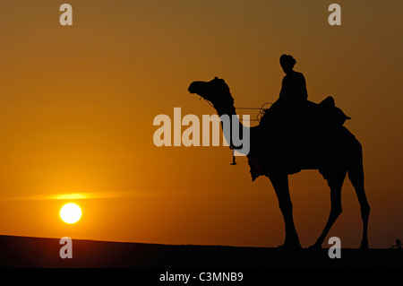 Dromedary, One-humped Camel (Camelus dromedarius). Rider on a dromedary in the Thar desert silhouetted against the - Stock Photo
